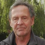 Hajo Rohmann